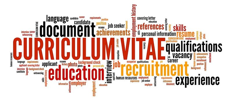 CV and career skills development