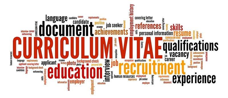 CV and career skills development
